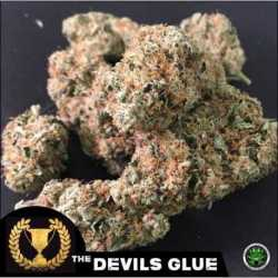 DEVIL'S GLUE (3)