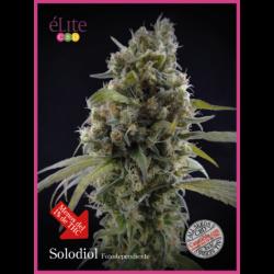 SOLODIOL (7) CBD