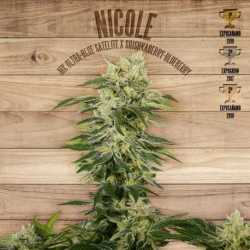 NICOLE (3)