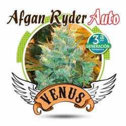 AFGAN RYDER AUTO (3)