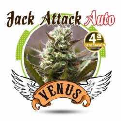 JACK ATTACK AUTO (25)