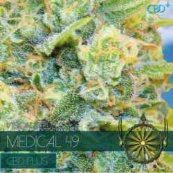 MEDICAL 49 (3) CBD
