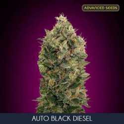 AUTO BLACK DIESEL (10)