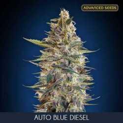 AUTO BLUE DIESEL (10)
