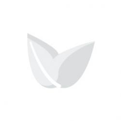 Balastro Electrónico con Dimmer 600W Hortilight