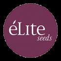 Élite Seeds Auto
