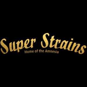 SUPER STRAINS AUTO | www.merkagrow.com