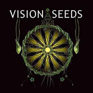 VISION SEEDS CBD | www.merkagrow.com