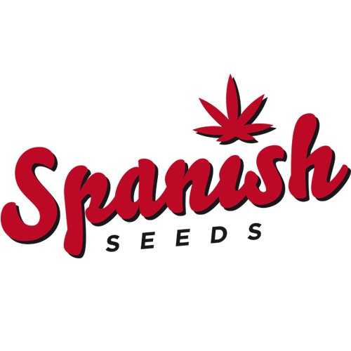 Spanish Seeds CBD | www.merkagrow.com
