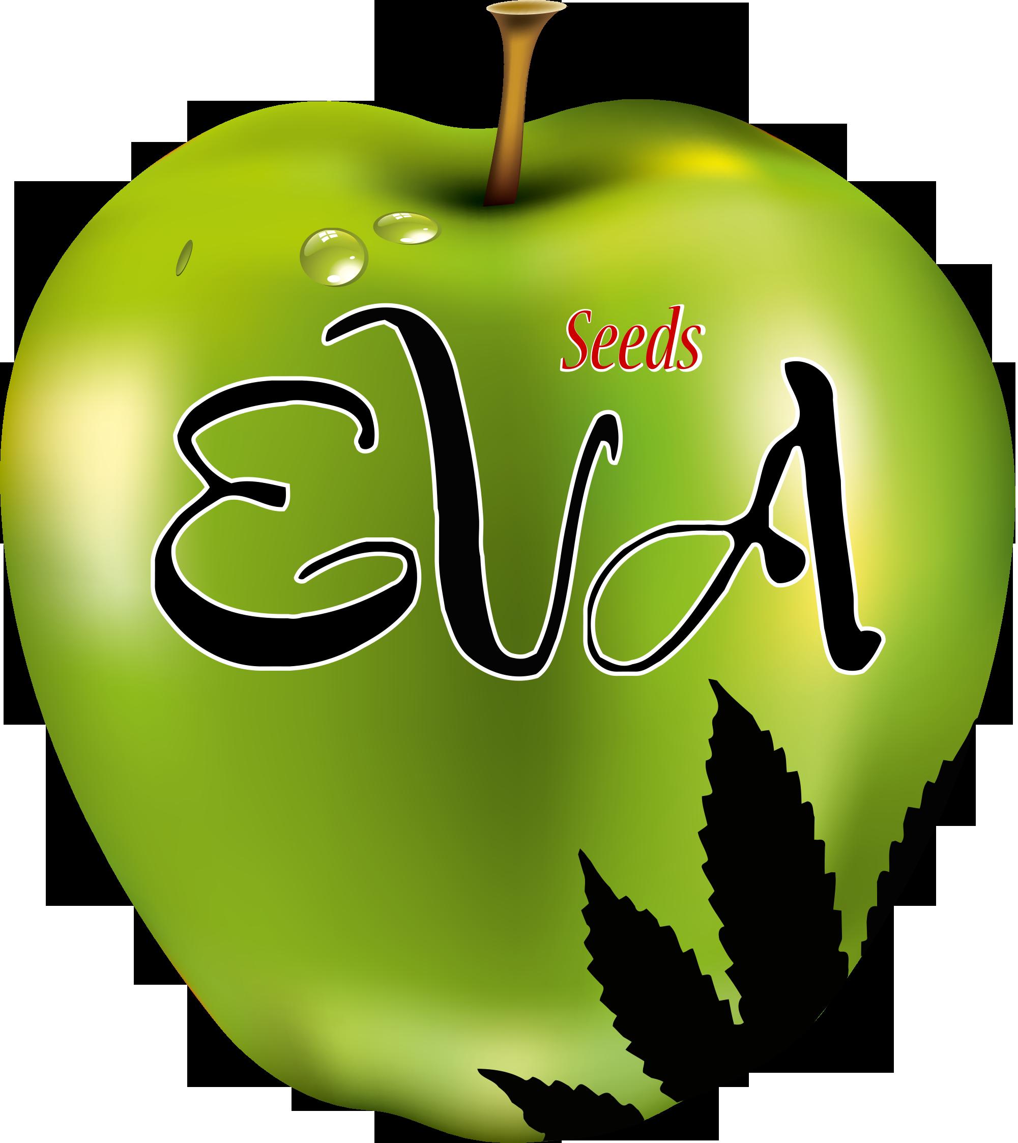 Eva Seeds | www.merkagrow.com
