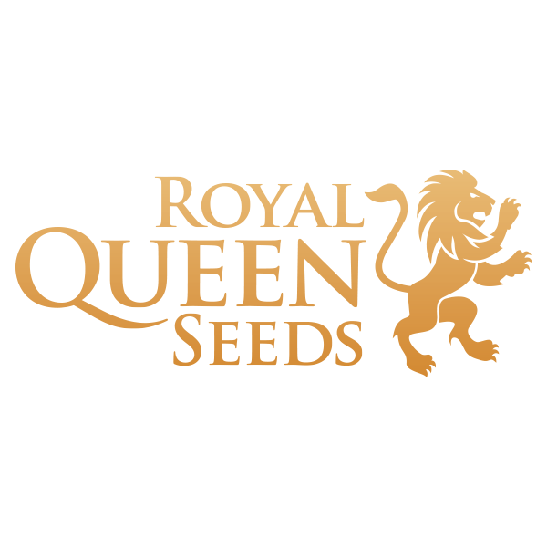 Royal Queen Seeds Auto | www.merkagrow.com