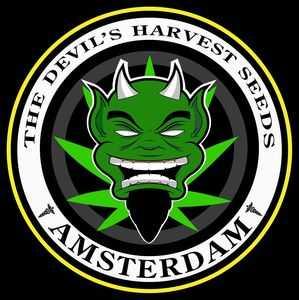DEVIL'S HARVEST SEEDS | www.merkagrow.com