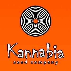KANNABIA AUTO | www.merkagrow.com