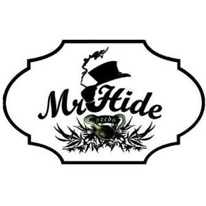 MR HIDE CBD | www.merkagrow.com